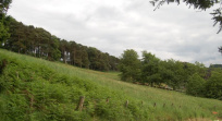 Thumbnail 3 of Development Site, Lauder Road, Stow, TD1