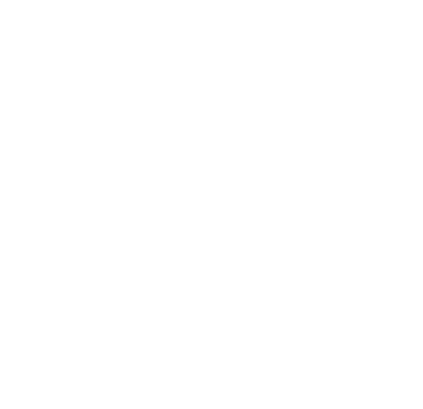 Village Properties logo